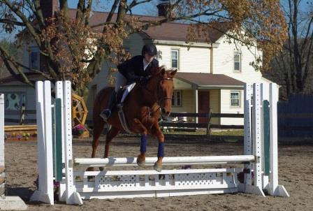 equestrian 2015 web page 2