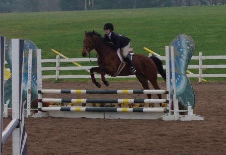 equestrian 2015 web page 3